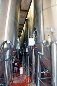 Parallel 49 fermenters
